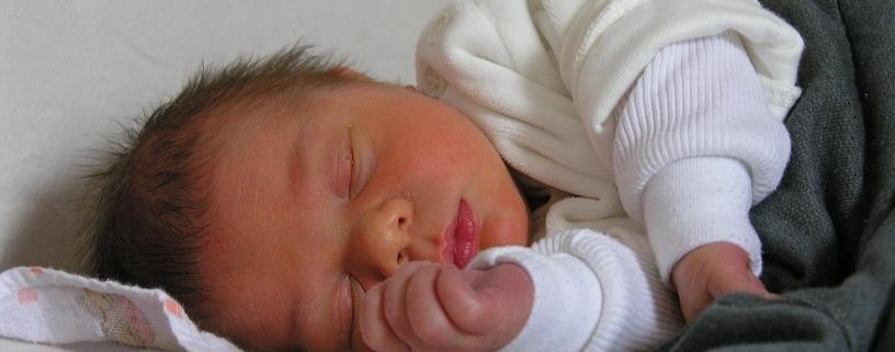 alvó újszülött